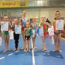 Секция художественной гимнастики