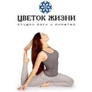 Студия йоги и пилатес «Цветок Жизни»