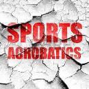 Школа спортивной акробатики