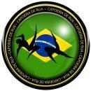«Capoeira de Rua»